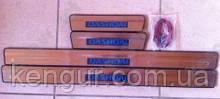 Накладки на пороги с подсветкой NISSAN QASHQAI