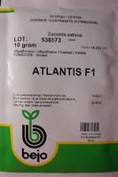 Семена огурцов Атлантис F1 10 гр. Bejo