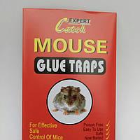Пастки липучки будиночки для мишей, фото 1