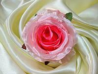 СБ Роза бутон раскрытый цветной