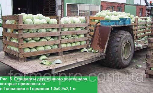Рис. 5. Стандарты деревянного контейнера, которые применяются в Голландии и Германии 1,0х0,9х2,1 м