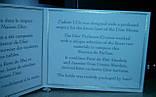 Женский парфюм Christian Dior J'Adore L'Or 40 мл (реплика), фото 5