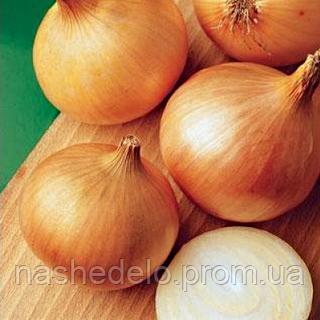 Семена лука репчатого Халцедон 2500 сем. Nasko