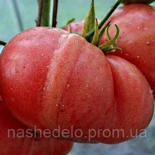 Семена томата Малиновый гигант 30 сем. Элитный ряд