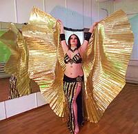 Занятия восточными танцами в Полтаве