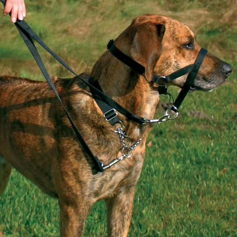 """Намордник тренировочный для собак Trixie """"Top Trainer"""" 50-57см/31см"""