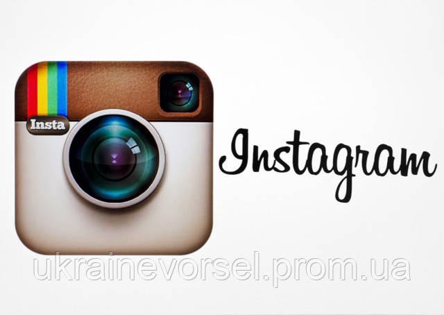 Присоединяйтесь к нам в Instagram!