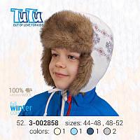 Шапка для мальчика TuTu арт. 52.3-002858(48-52)