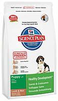 Hill's SP Puppy Medium Breed Lamb & Rice для щенков средних пород 12 кг
