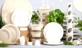 Посуда одноразовая пластиковая, шпажки