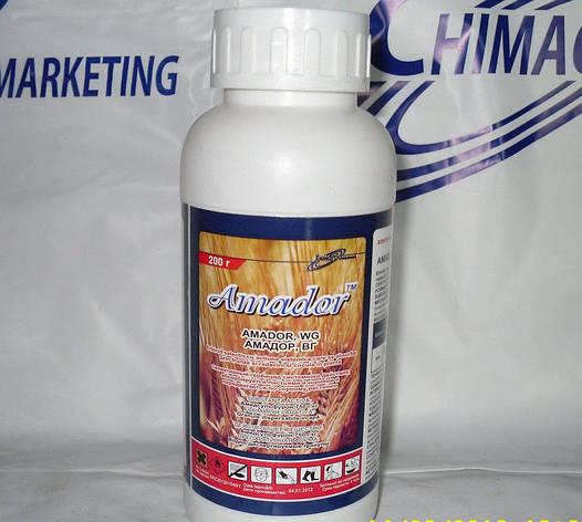 Гербицид Амадор (Аркан) - амидосульфурон, 750 г/кг, для пшеници и ячменя, кукурузы, фото 2