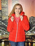 Куртка женская красная модель 999