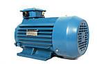 Электродвигатель АИР 100 L8, АИР100L8, АИР 100L8 (1,5 кВт/750 об/мин), фото 3