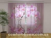 ФотоТюль Лилейная орхидея