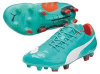 Футбольные бутсы Puma evoPower 1 FG