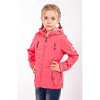 Куртка-ветровка  темно-синяя для девочки Goldy (13-ВД-16)
