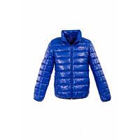 """Куртка демисезонная цвета """"электрик"""" для мальчика Goldy (17-ВМ-16)"""