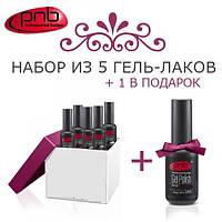 Набор гель-лаков PNB 5 + 1 В ПОДАРОК