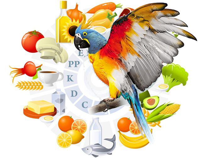 Витамины для птиц
