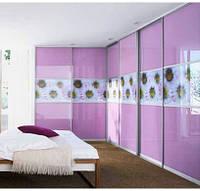 """Дверь купе """"Виктория"""" (2680х700), Цветное стекло, Фотопечать."""