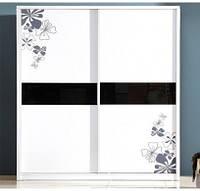 """Дверь купе """"Валенсия"""" (2680х700), Цветное стекло, Матовый рисунок."""