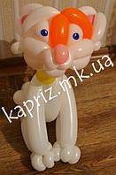 Котик из шаров