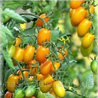 Семена томата черри Золотые пальчики F1 1 гр. Элитный ряд