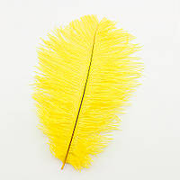 Перо страуса 25см (желтое)  TVV-4284