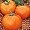 Семена томата Хурма 1 гр. Элитный ряд