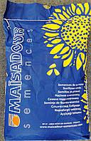 МАС 94 С семена подсолнечника Маисадур Семанс