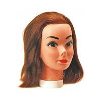 Голова учебная Sibel 0030431