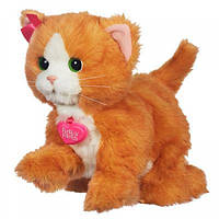 Дейзи игривый котенок Hasbro Fur Real Friends (A2003)