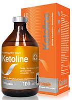 Кетолайн 100 мл инъекционный (аналог Аинил, Аініл)