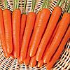 Семена моркови Мазурка 3 гр. Nasko