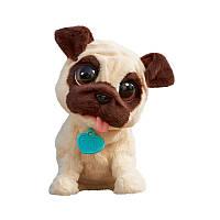Игривый щенок Джей Джей Hasbro FURREAL FRIENDS (B0449)