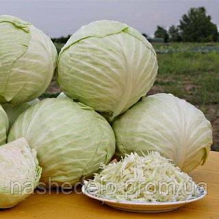Семена капусты б/к Акварель F1 100 сем. Садыба центр