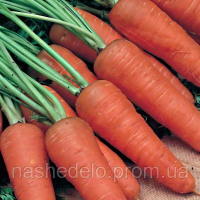Семена моркови Шантане 3 гр. Nasko