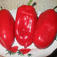Семена перца сладкого Полет 5 гр. Элитный ряд