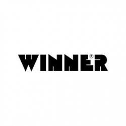 Мячи Winner