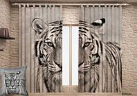 Фотошторы Бенгальский Тигр