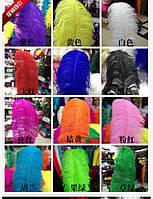 Перо страус 10-15см