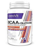 BCAA аминокислоты Ostrovit BCAA + L-Glutamine (200 г)