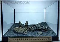Набор гальки для нано-аквариума  №15