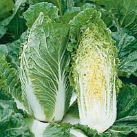 Семена среднеспелого  гибрида пекинской капусты для использования в свежем виде и хранении сорт Суприн F1