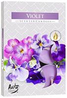 Свеча чайная ароматизированная Bispol Фиалка 1.5 см 6 шт (p15-131)