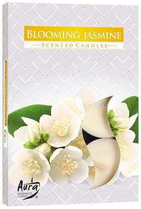 Свеча чайная ароматизированная Bispol Жасмин1.5 см 6 шт (p15-169)