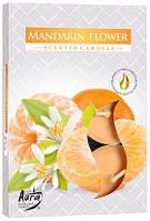 Свічка чайна ароматизована Bispol Мандарин 1.5 см 6 шт (p15-203)