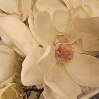 Цветок искуственный лилия Sia