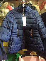Демисезонная куртка с коротким рукавом 3 цвета