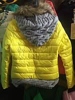 Демисезонная куртка с вязаным капюшоном 3 цвета